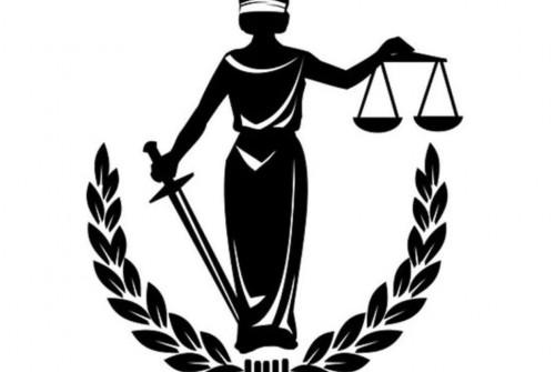 Возражение адвоката Серновец на Действия Председательствующего